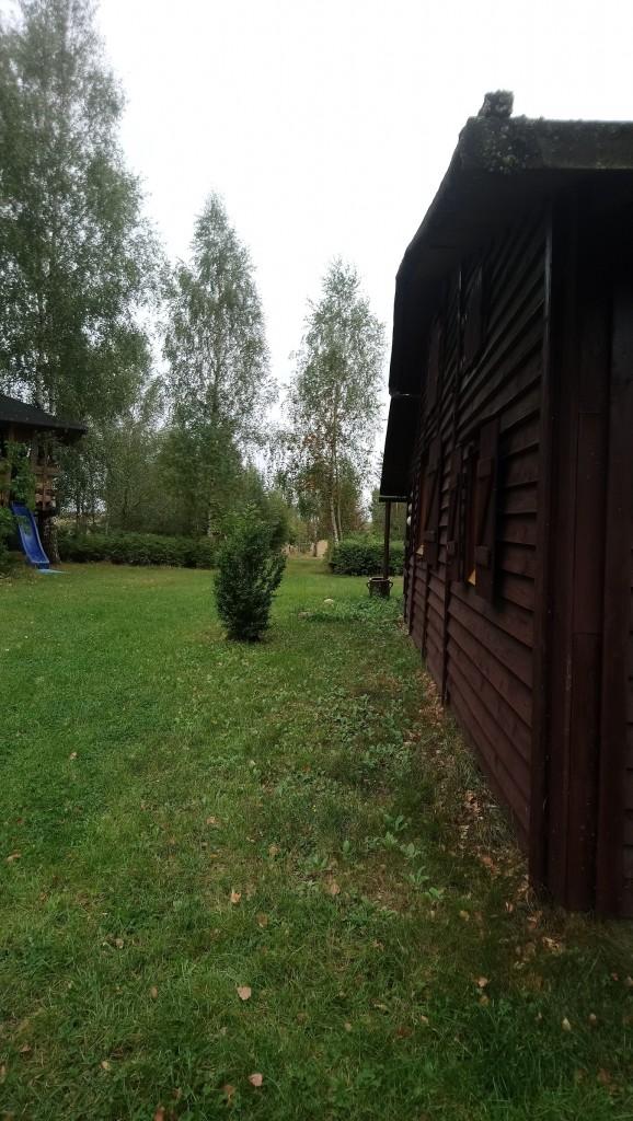 Rośliny, Wrześniowe fotki.................... - ................i wiejskie klimaty..............