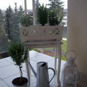 Sezon balkonowy rozpoczełam:)