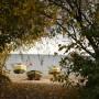 Rośliny, Złoto jesieni i moje zielone bombki..... - ..................i kutry na plaży.............