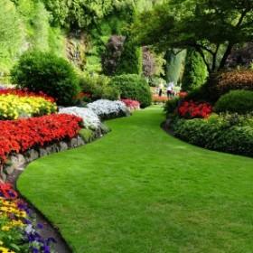 9 pomysłów na inspirujący ogród