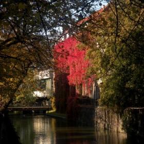 Jesień w mieście i na wsi