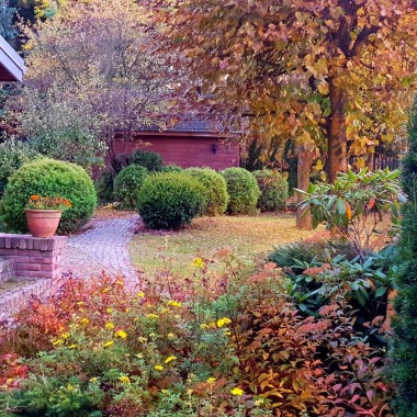 Metamorfozy ogrodu.
