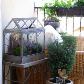 lato na balkonie