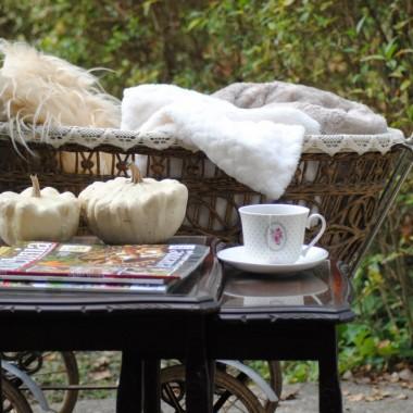 Ciepły tegoroczny listopad pozwolił nawet na herbatkę w ogrodzie :)