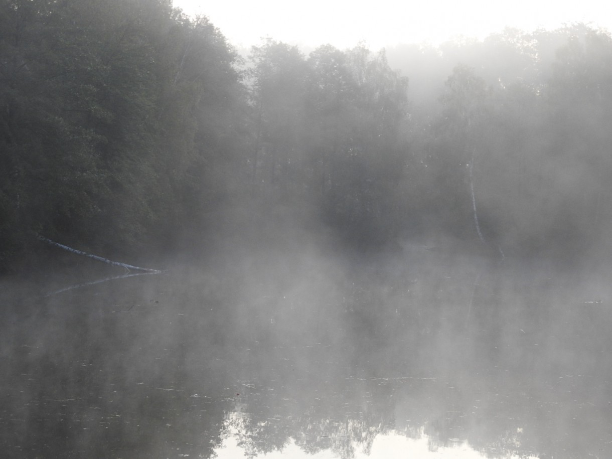 Leśne klimaty, JESIEŃ...JAK ZACZAROWANA