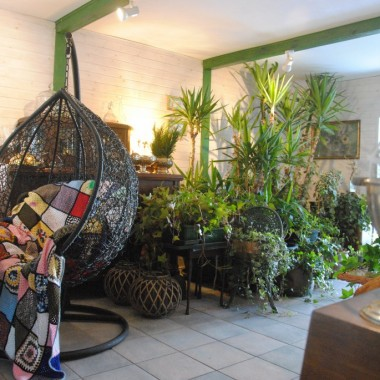 Dzisiejsze przedpołudnie spędziłam na czyszczeniu po zimie i zasilaniu roślin w letnim pokoju :)