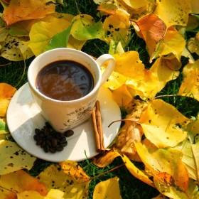 ♪ Piosenki o Jesieni ♪