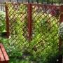 Pozostałe, Mój ogródek