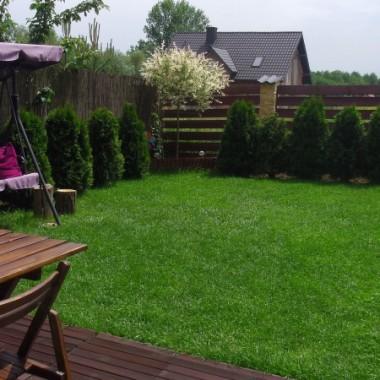 Wiosna w małym ogródku