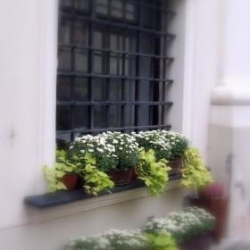 Okna, balkony, tarasy