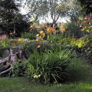 trzecia próba zrobienia galerii.....ogród w tym roku słabszy..bo miałam remonty i plac budowy prawie do czerwca ale teraz udało mi sie wprowadzic pare zmian które zaowocuja za dwa lata :)