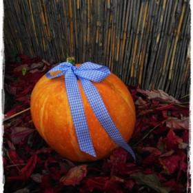 Tak jak powinno być -jesiennie&#x3B;