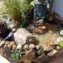 Leśne klimaty, Oczko wodne na tarasie