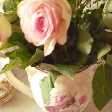 .............i róże............