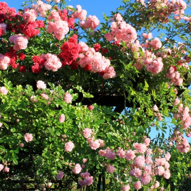Kto powiedział ,żeby musi być drogo ,aby było pięknie ,miło i przyjemnie ....