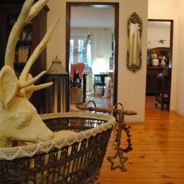 W domku też jelonki rządzą :) Kremowy rozsiadł się już tradycyjnie w wózku :)