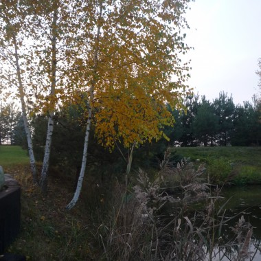 Jesień zawitała na moim Kącie:))