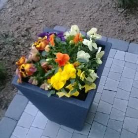 Moja wiosna 2014