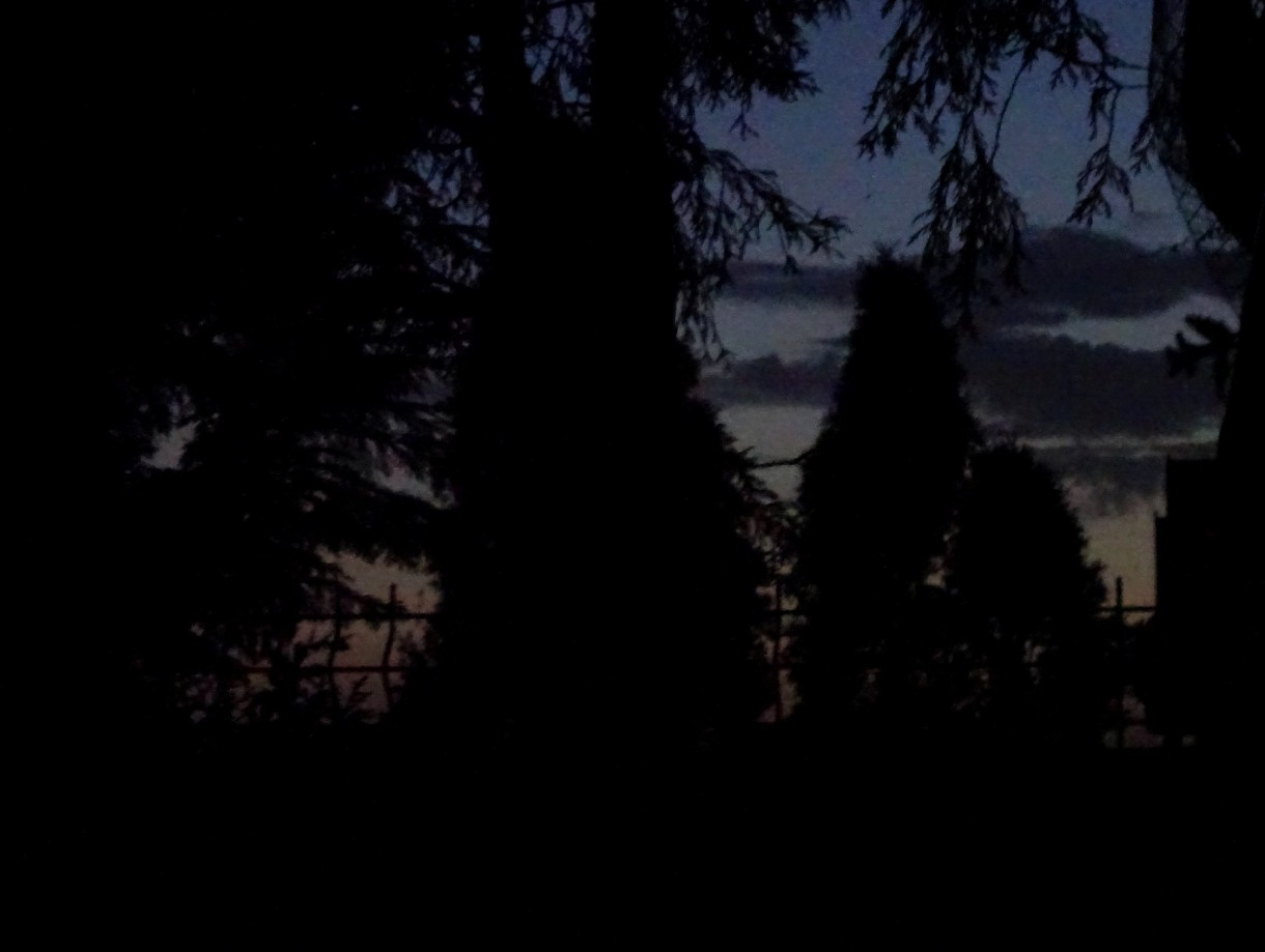 Taras, Wieczór świętojański i paprocie