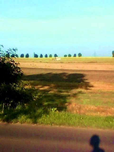 Rośliny, Kocham Śląsk.. - a tu juz po zniwach..