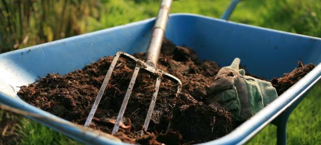 Jak stworzyć własny kompost?