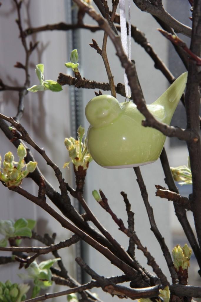 Dekoracje, Moja Zielona Wielkanoc - ...