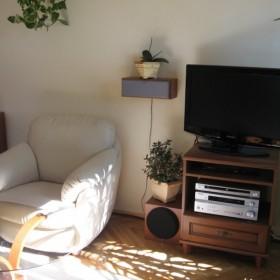 moje mieszkanie-salonik