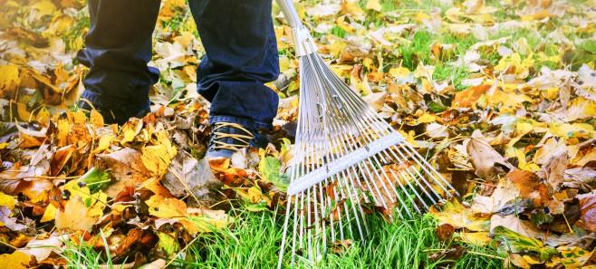 Wrzesień w ogrodzie - nie zapomnij o tych pracach!