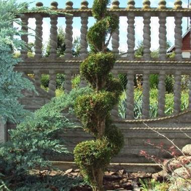 __Mój Ogród__