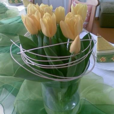 Tulipany otulone ratanem