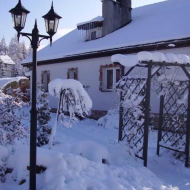 Zima w moim ogrodzie