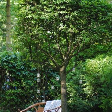 i relaks w ogrodzie :)