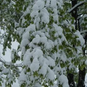 Góry Sowie i Kotlina Kłodzka 3 maja 2011