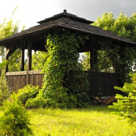 Działka - ogród