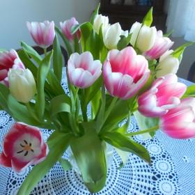 wiosennie i walentynkowo