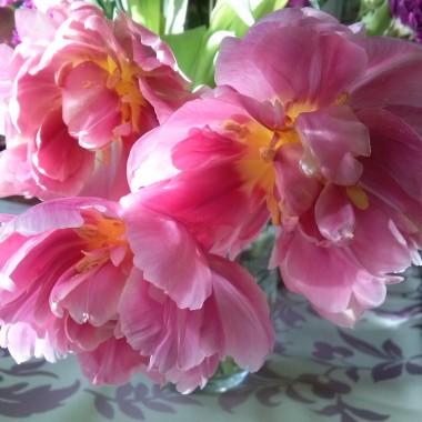 """Wiosna w domu i """"małe"""" przymiarki do Świąt...:)"""