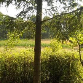 Wiejskie klimaty czyli weekend na wsi...........
