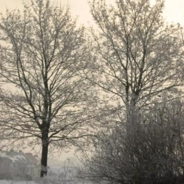 zimowa szata