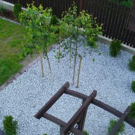 Kamień w ogrodzie