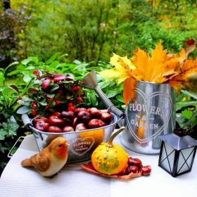 jesien ,)