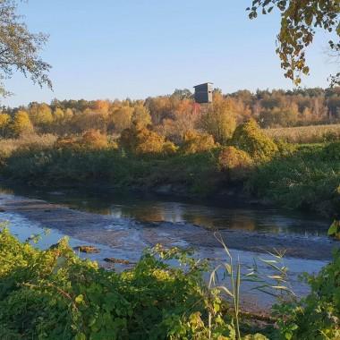 Rzeka spuszczona, nadchodzi czas  odłowienia ryb.