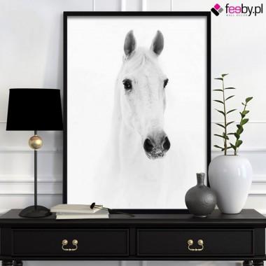 Elegancja obrazów czarno białych