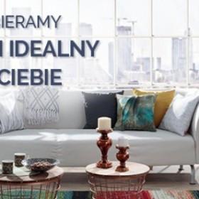 Jak wybrać najlepszy dywan do mieszkania? Infografika