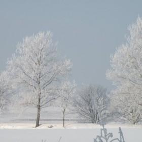 Jeden zimowy dzień na Kociewiu.