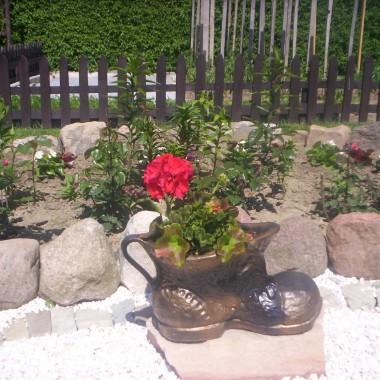 Ogród 2011