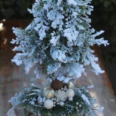 Choinka świąteczna na pniu. Cena 69 złoty