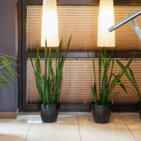 Jak odpowiednio zaplanować oświetlenie w mieszkaniu?