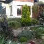 Ogród, Ogród 2019
