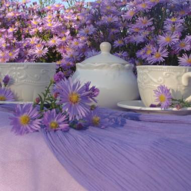 Astry nowoangielskie w moim ogrodzie i :) popołudniowa angielska :) herbata.