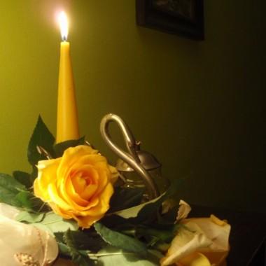 Kwiatkowo....róża ...
